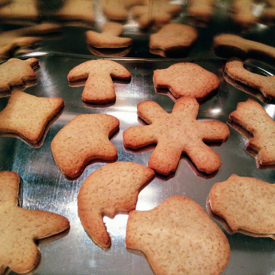 Biscotti Classici Di Natale.Biscotti Di Natale Pan Di Zenzero Stefy S Flavours